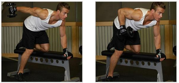 dumbbell tricep kickbacks
