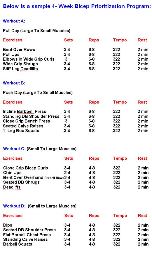 Four Week Bicep Prioritization Program