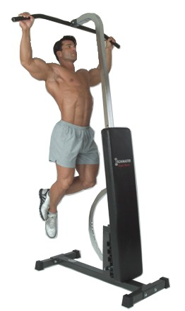 Ironmaster Pull up Attachment