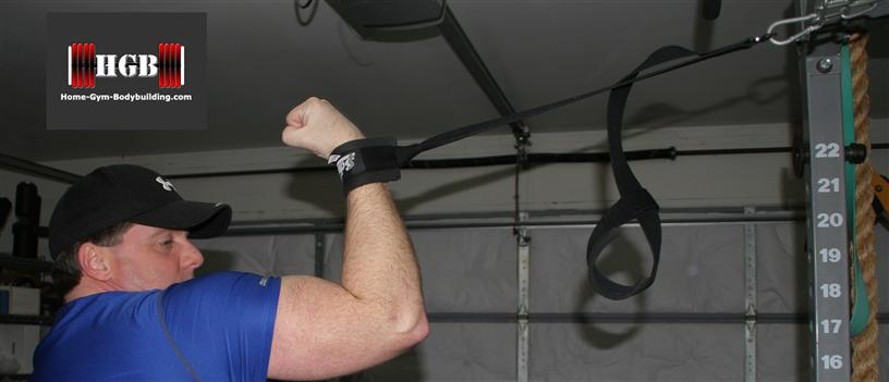 Schiek ab strap for biceps