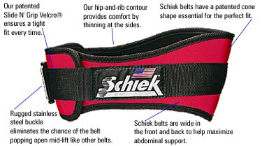 Schiek Weight Lifting Belt