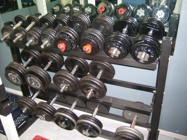 tim-l gym