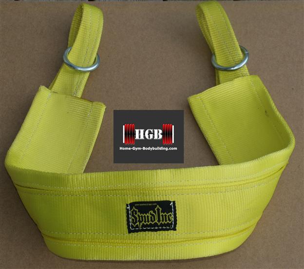 Spud Belt Squat Belt